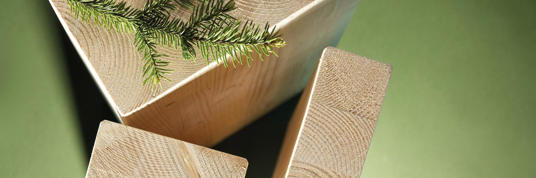 Pin sylvestre autoclav classe 4 vert lamell coll rion bois for Pin autoclave classe